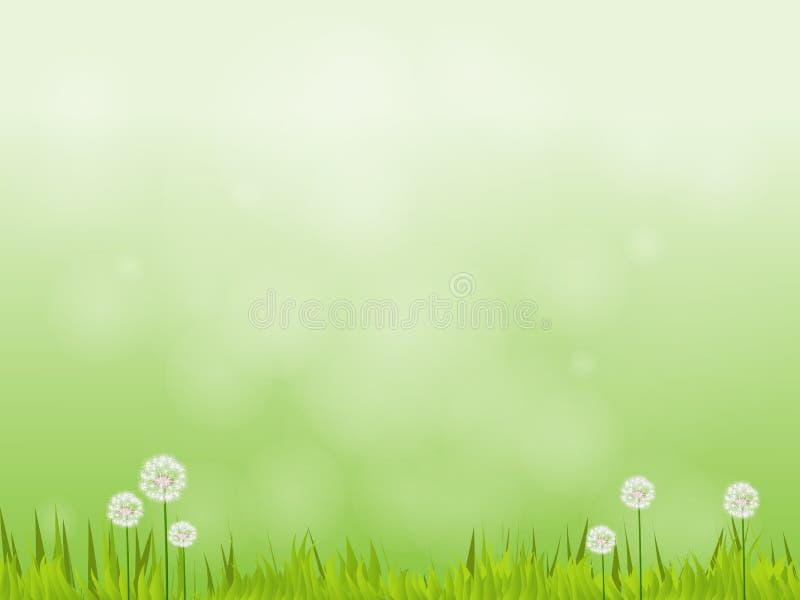 Fundo verde natural do vetor fotos de stock royalty free