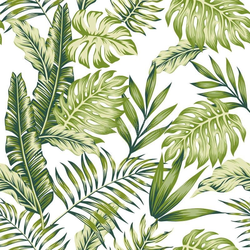 Fundo verde pastel do branco da selva ilustração royalty free
