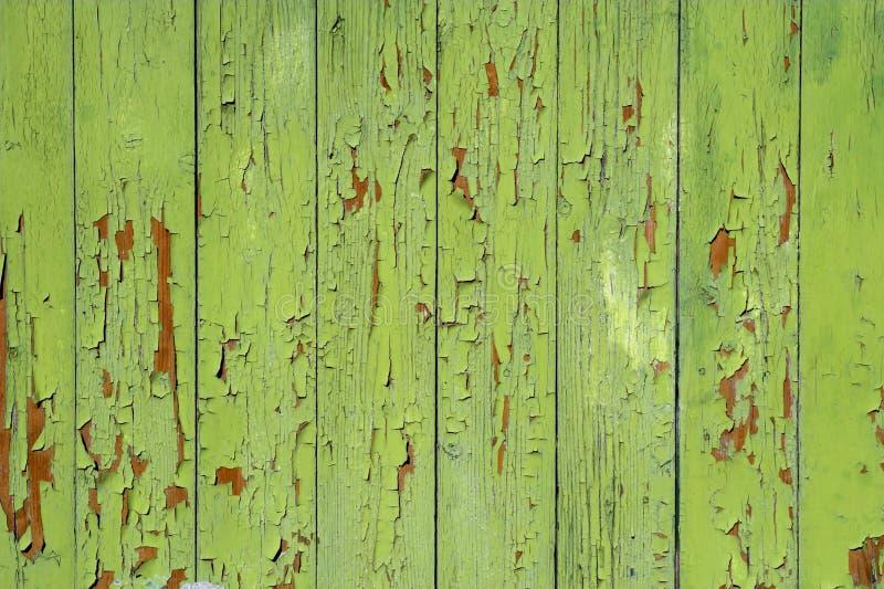 Fundo verde pintado imagens de stock royalty free