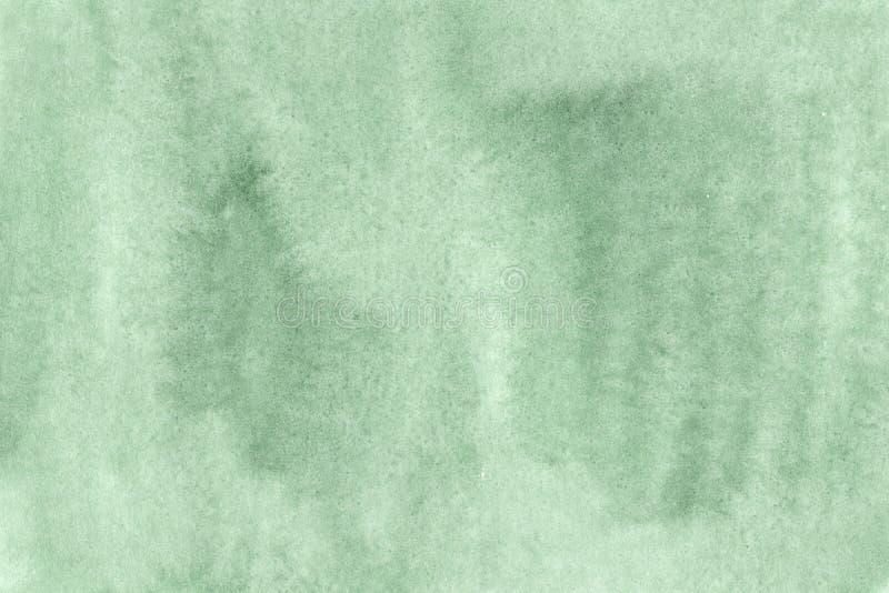 Fundo verde Spruce protegido da aquarela ilustração royalty free