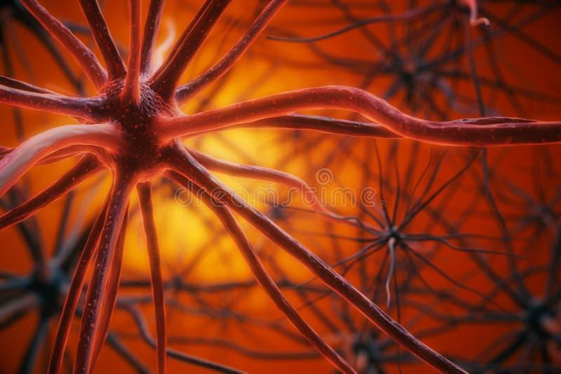 Fundo vermelho do neurônio ilustração royalty free