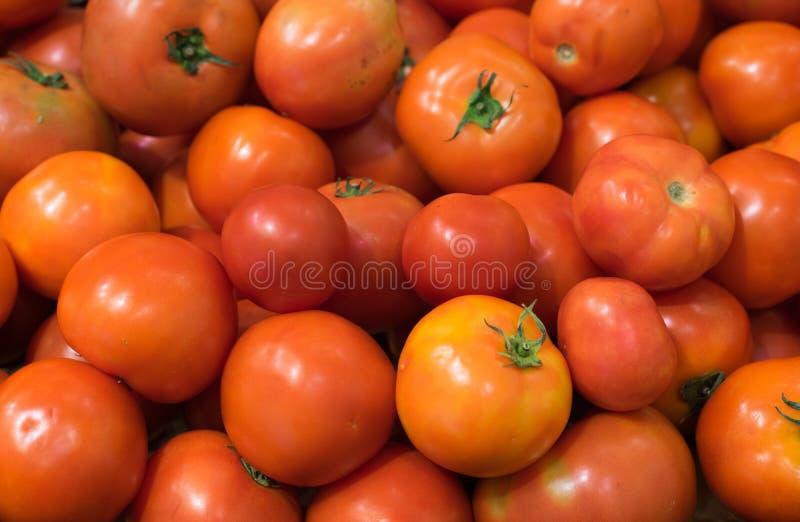 Fundo vermelho dos tomates, trajeto de grampeamento incluído foto de stock
