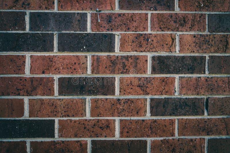 Fundo vermelho e escuro da textura da parede de tijolo foto de stock royalty free