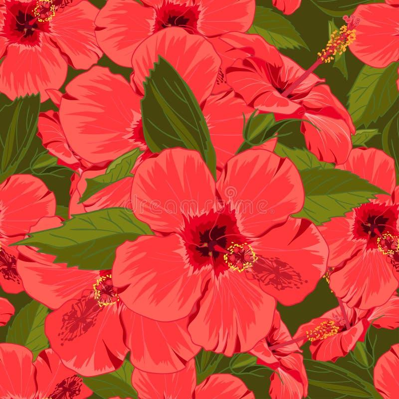 Fundo vermelho floral sem emenda do hibiscus no estilo desenhado à mão realístico ilustração stock