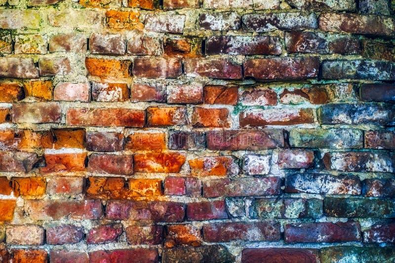 Fundo vestido velho vermelho da textura da parede de tijolo imagem de stock