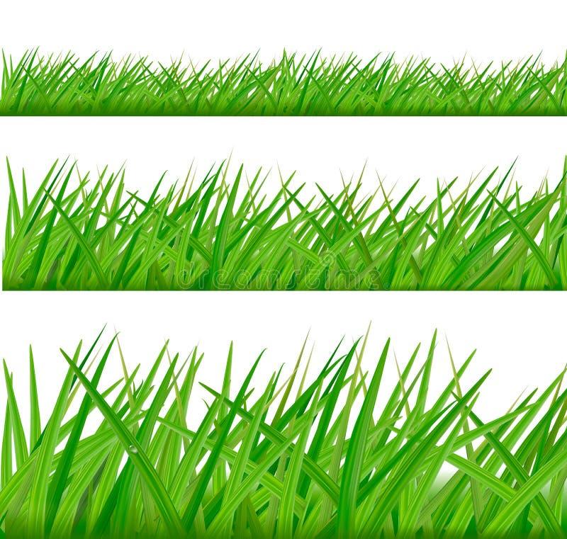 Fundos com grama verde. ilustração stock