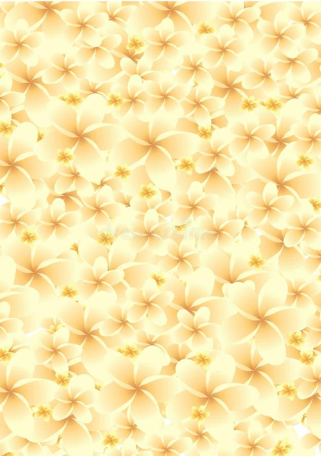Fundos da flor foto de stock royalty free