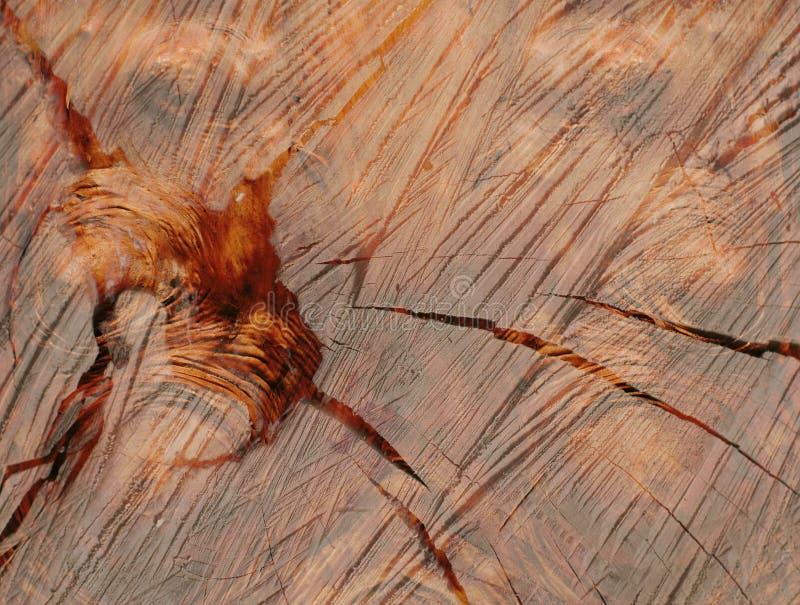 Fundos de madeira fotografia de stock