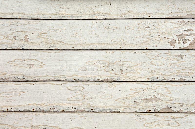 Fundos de madeira brancos foto de stock royalty free