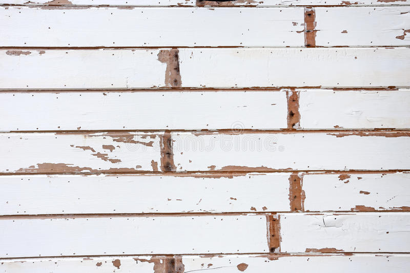 Fundos de madeira brancos da textura imagens de stock