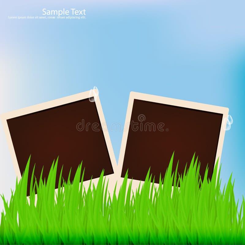 Fundos do verão com lugar para a foto e o texto imagem de stock