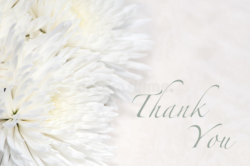 Funeral Thank You Card royalty free stock photography