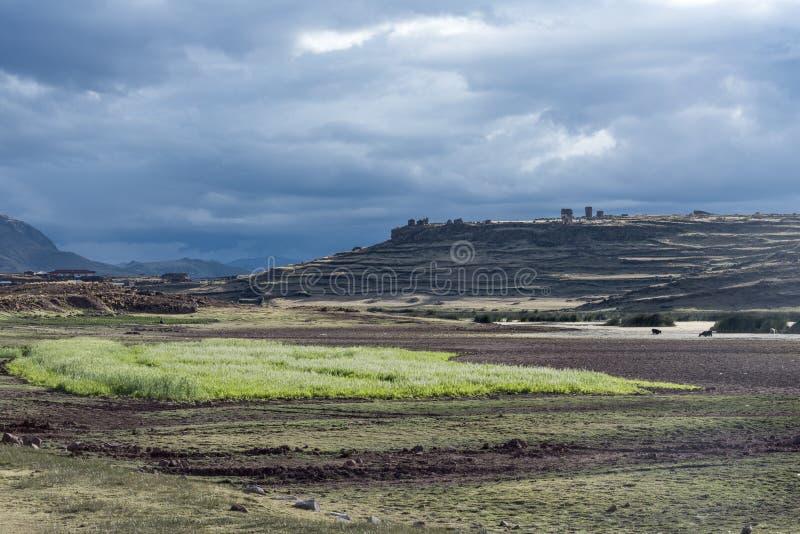 Funerary torens in Sillustani dichtbij Puno, Peru stock fotografie