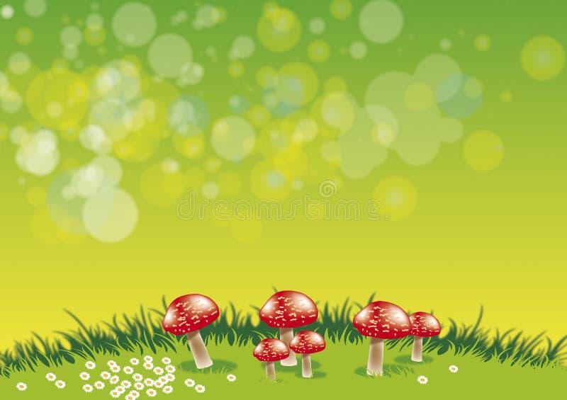 Funghi illustrazione vettoriale