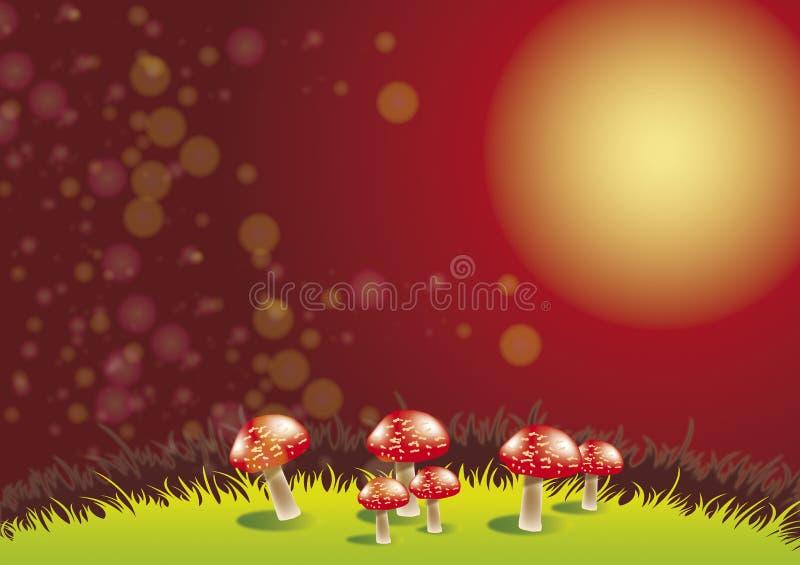 Funghi alla notte illustrazione vettoriale