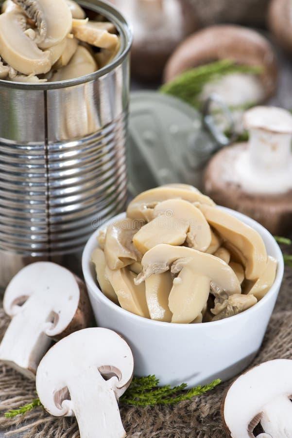Funghi conservati fotografia stock libera da diritti