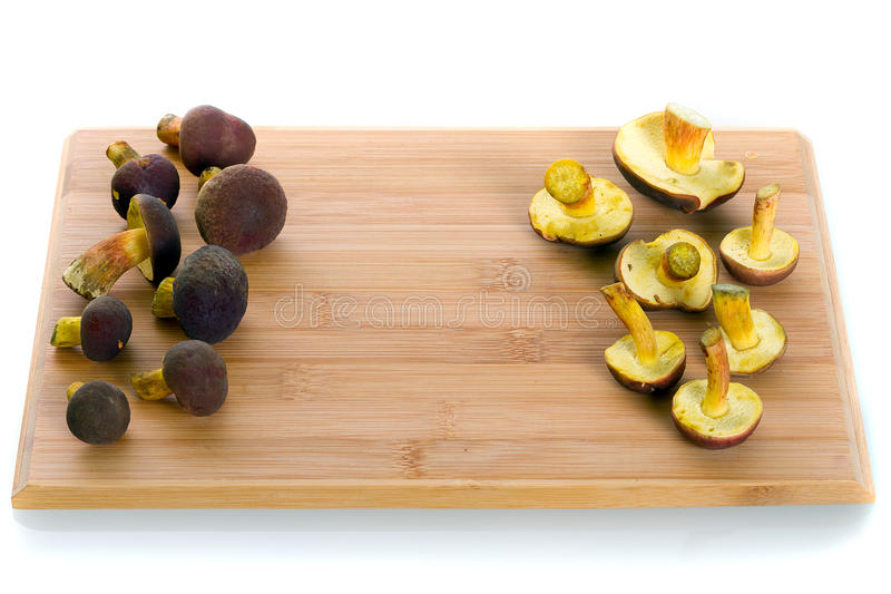 Funghi Di Badius Del Boletus Per Cucinare Fotografia Stock