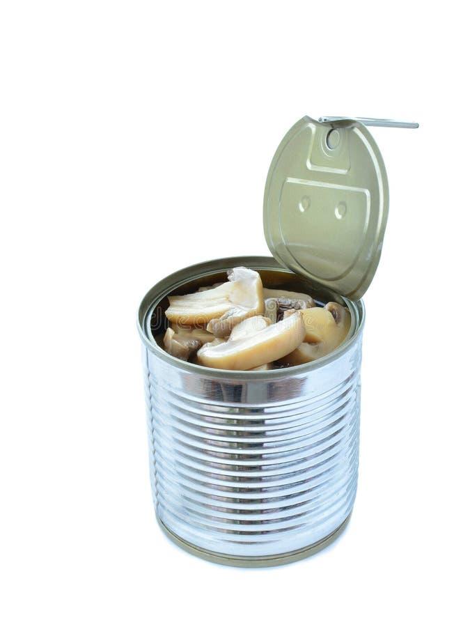 Funghi di bottone inscatolati in latta isolata su bianco immagini stock libere da diritti