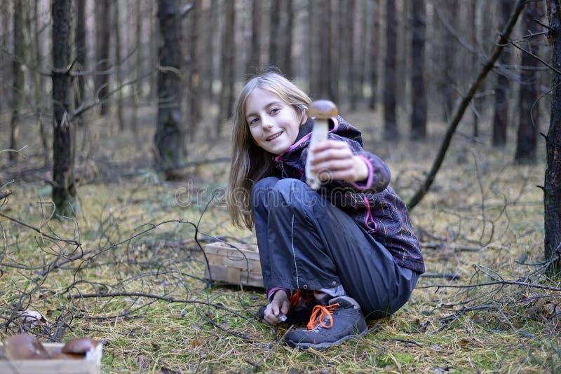 Funghi di raccolto della ragazza fotografia stock