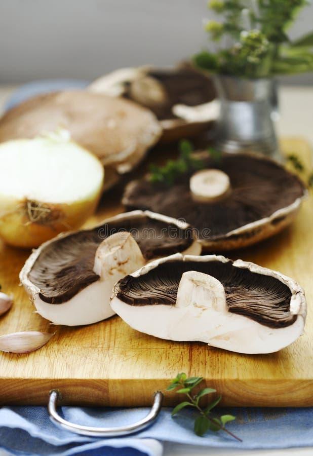 Funghi di shiitake crudi freschi sulla cottura del bordo fotografia stock