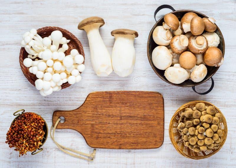 Funghi differenti nella vista superiore fotografia stock