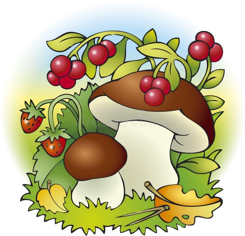 Funghi e bacche royalty illustrazione gratis