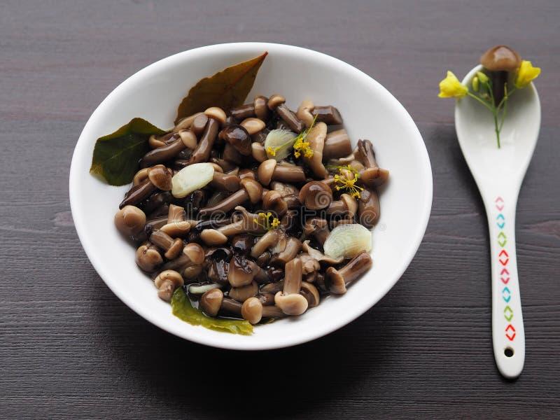 Funghi e spezie marinati deliziosi e bei in un piatto bianco immagine stock