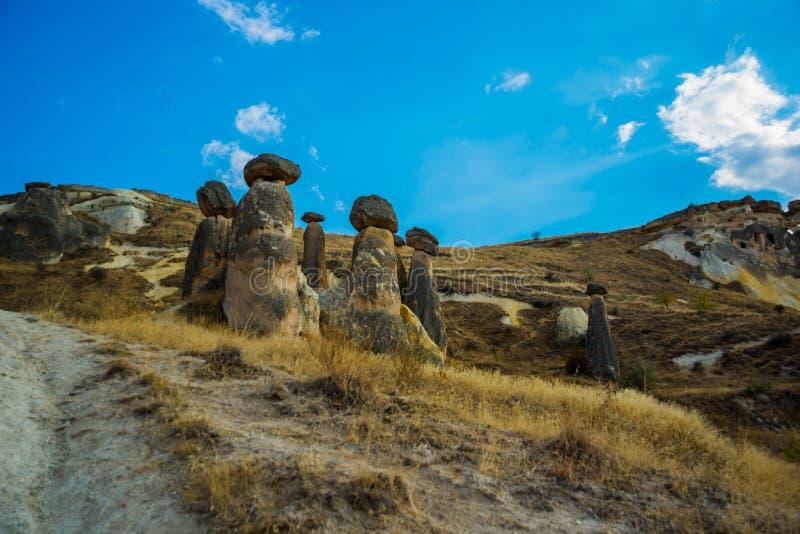 Funghi favolosi della roccia Bello paesaggio con le montagne insolite Camini leggiadramente, Pasabag, valle dei monaci, Cappadoci immagini stock