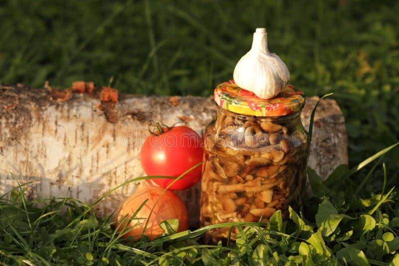 Funghi marinati dalla foresta fotografia stock