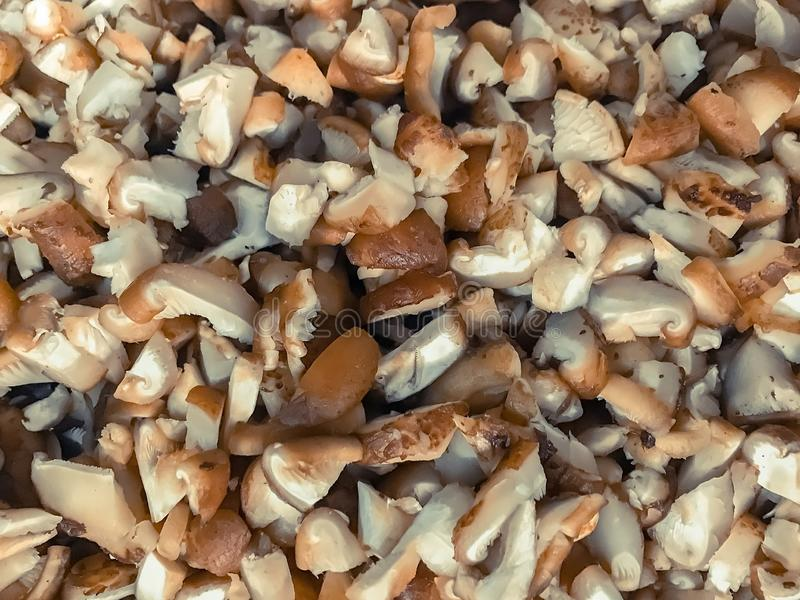 Funghi per il cuoco nella cucina immagine stock