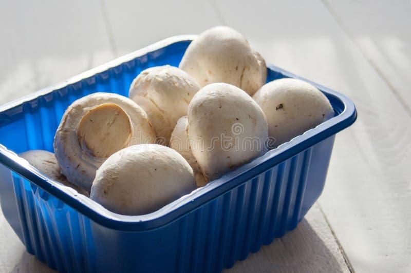 Funghi prataioli freschi in scatola blu su fondo di legno bianco Primo piano fotografia stock libera da diritti