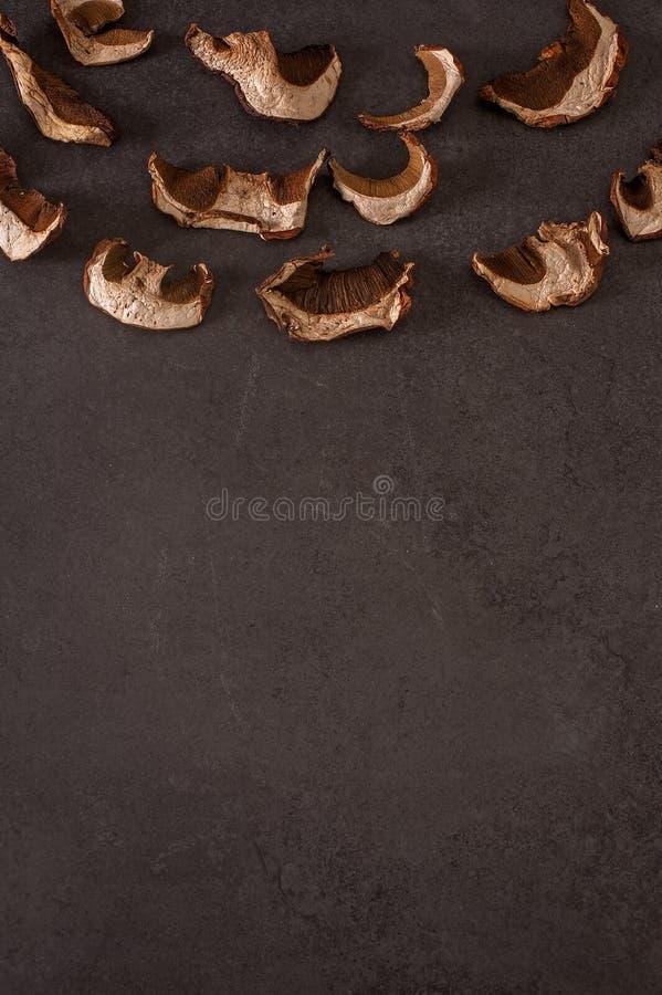 Funghi secchi su un fondo grigio fotografia stock