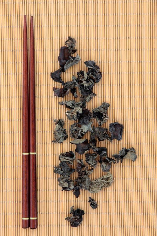 Fungo cinese nero immagine stock