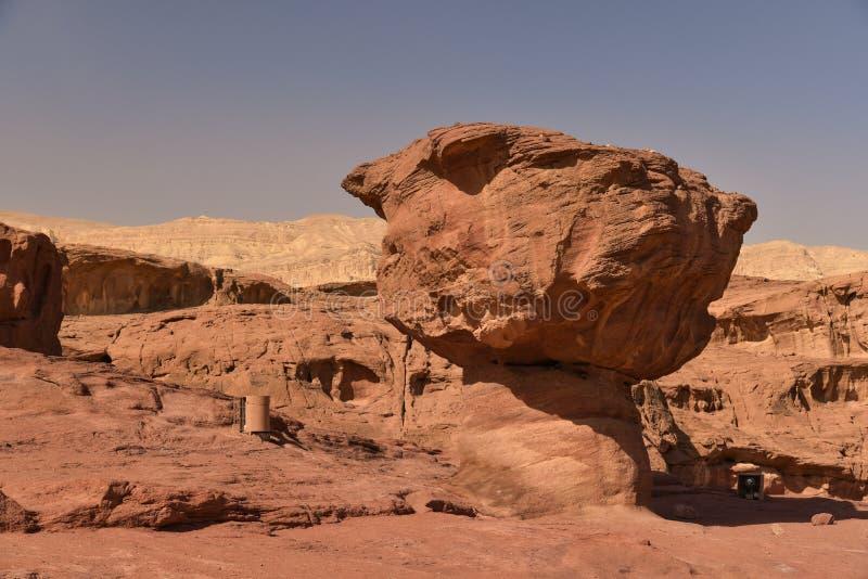 Fungo della roccia nel parco nazionale di Timna, Israele immagine stock