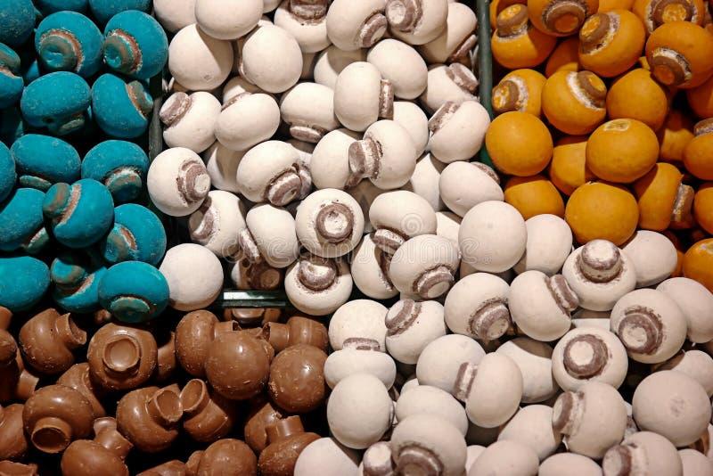 Fungo di Candy immagine stock libera da diritti