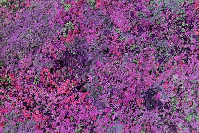 Fungo gasto do Grunge na textura do pedregulho - fundo abstrato bonito da foto fotos de stock