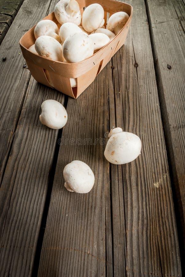 Fungo prataiolo crudo dei funghi fotografia stock libera da diritti