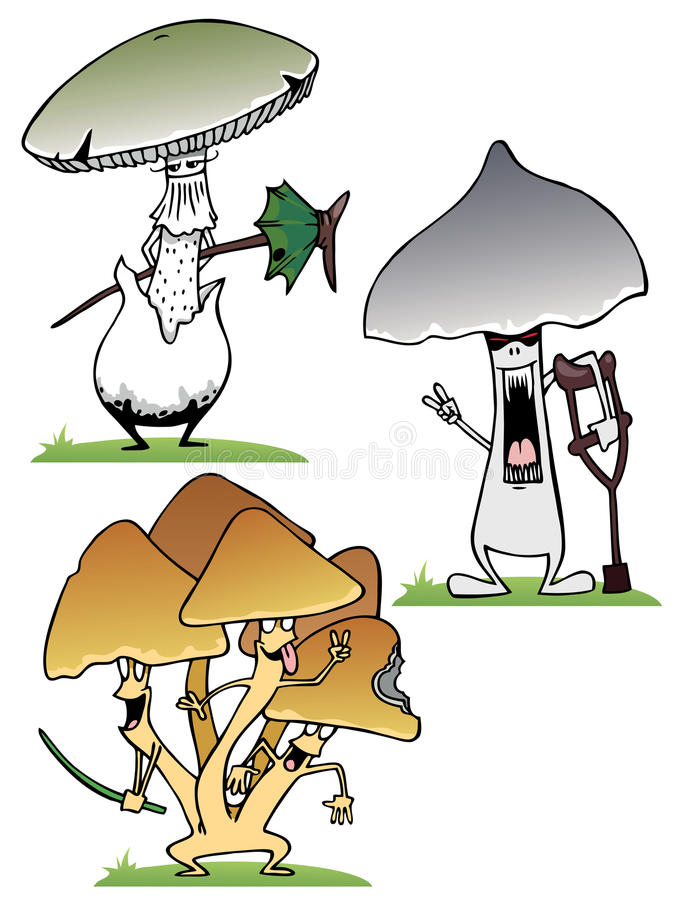 Download Fungus stock vector. Illustration of growth, botany, food - 20277571