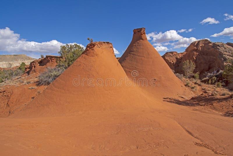 Funis resistidos no deserto fotos de stock royalty free