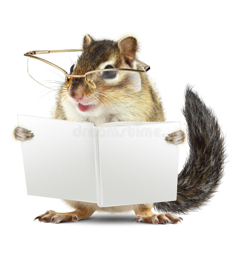 Free Funny Animal Chipmunk With Glasses Reading Book Stock Image - 61162641