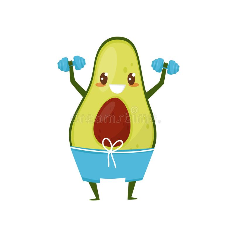 Funny avocado exercising with dumbbells, sportive fruit cartoon character doing fitness exercise vector Illustration on. Funny avocado exercising with dumbbells stock illustration