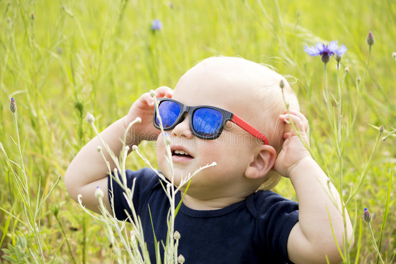 Funny baby boy in sunglasseslooking at sun in the field cornflowes.  royalty free stock photos