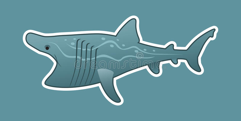 Funny basking shark stock photo