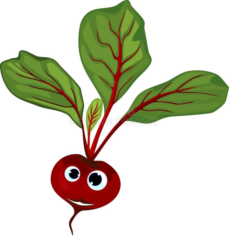 Funny beetroot with face on white background. Funny beetroot with face isolated on white background vector illustration