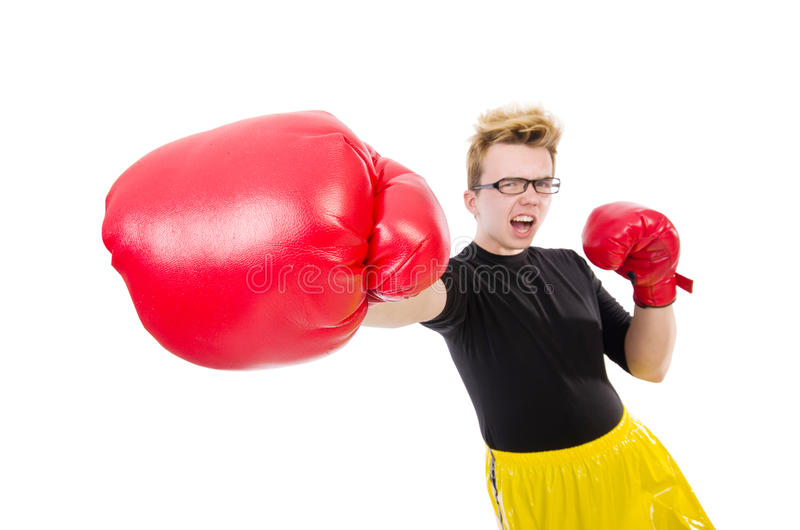 Download Funny boxer stock image. Image of fist, fitness, isolated - 41118091