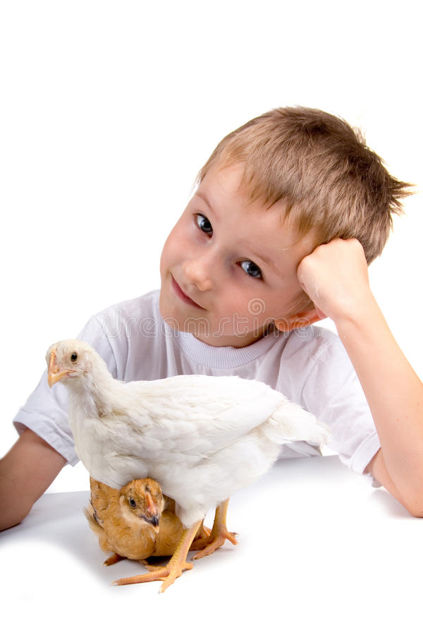 Download Funny boy with chickens stock photo. Image of dress, child - 15082336
