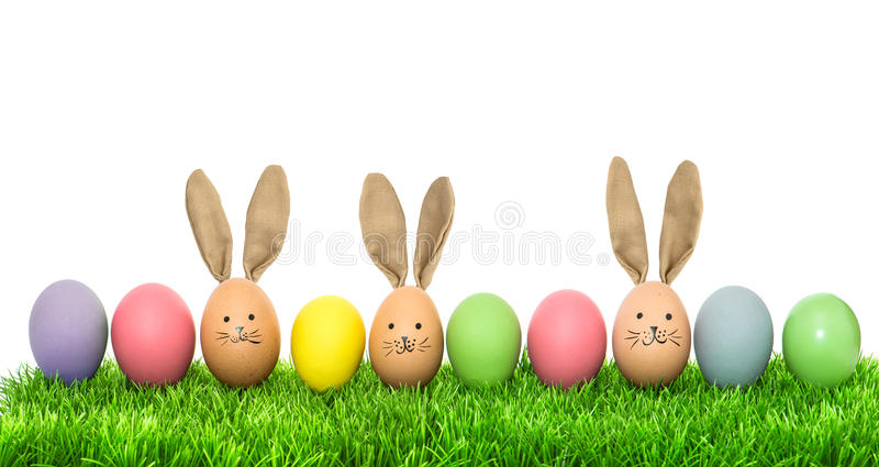 Funny bunny easter eggs. Holidays banner. Funny bunny easter eggs over white background. Holidays banner stock images