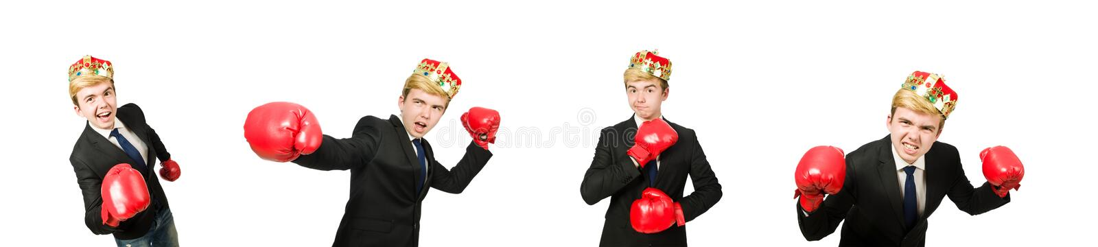 Funny businessman with crown and boxing gloves stock photography
