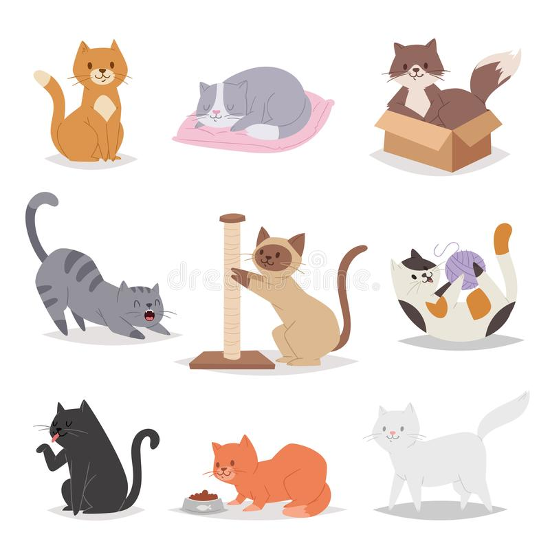 Funny cartoon cats characters different breeds illustration. Kitty young pet. Funny cartoon cats characters different breeds illustration. in cartoon style royalty free illustration