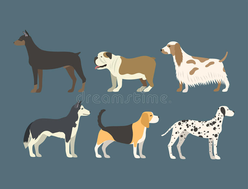Funny cartoon dog character bread in flat style puppy pet animal doggy vector illustration. stock illustration